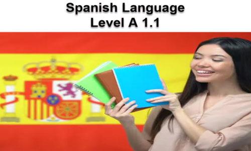 Spanish Language A 1.1